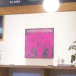 #3 高田研二郎/Kenjiro TAKADA